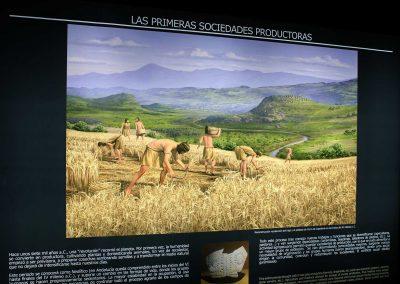 03-ilustracion-recolectores-del-neolitico-mudejar-museo-muvvel
